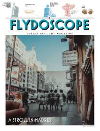 Domicilia Parce Que Votre Maison Mérite L Attention Flydoscope N 1 2016 By Maison Moderne Issuu