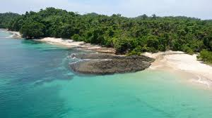 100 Dolphin Capital Investors RitzCarlton To Open A Ritz Reserve On Pearl Island THE PANAMA
