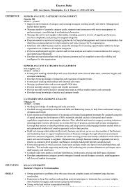Download Category Management Analyst Resume Sample As Image File