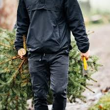 Tannenbaum Christmas Tree Farm Michigan by Here Is Where To Get Your Christmas Tree This Year