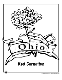 State Flower Coloring Pages Ohio Page Classroom Jr