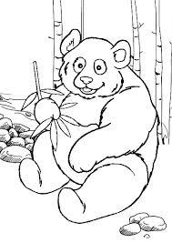 Panda Preschool Coloring Pages Zoo Animals