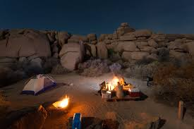 Earth Floor Biomes Desert by Joshua Tree National Park Proven Tips And Things To Do