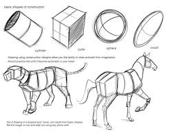 278 Best Creature Anatomy Images On Pinterest