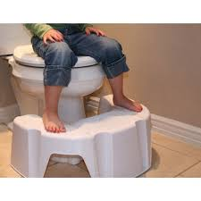 Walmart Potty Chairs For Toddlers by Little Looster Booster Potty Seat Step Walmart Com