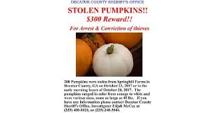 Tallahassee Pumpkin Patch by 200 Pumpkins Stolen From Springhill Farms In Bainbridge News
