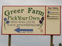 Pumpkin Patch Vancouver Washington by Things To Do In Vancouver Wa U Pick Farms Little Wagon Train