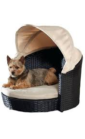 Canopy Dog Bed Antique Gold Iron Crown Canopy Pet Bed Canopy Dog
