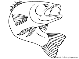 Bass Fish Coloring Pages Realistic