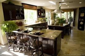 Kitchen Designs With Dark Cabinets For Exemplary Pictures Of Kitchens Traditional Espresso Decor