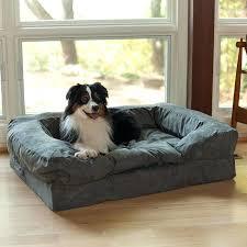 Kirkland Dog Beds by Kirkland Dog Beds Canada Tag Costco Dog Beds Canada
