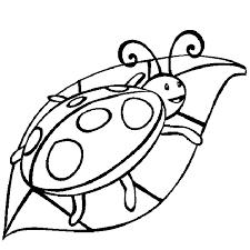 Printable Ladybug Coloring Pages