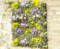 Vertical Garden Living Wall Planter