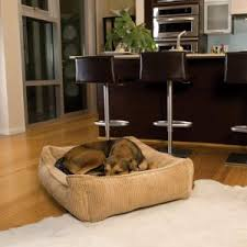 jax and bones dog beds on hayneedle shop dog beds by jax and bones