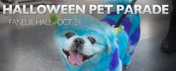 Tompkins Square Park Halloween Dog Parade Winner by Halloween Pet Parades The Latest News From Petravelr Com
