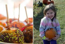 Skinny Bones Pumpkin Patch Food by Omaha U0027s Best Pumpkin Patches Apple Orchards Corn Mazes More