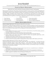 Entry Level It Project Manager Resume Financial Management