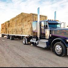 Hay For Sell   Hay Map Rapid Relief Team Hay From Tasmania To Local Farmers Goulburn Post Trucks Wagon Lorry Rig Tractors Hay Straw Photos Youtube Hay Trucks For Hire Willow Creek Ranch Hauling Bales Hi Res Video 85601 Elk161 4563 Morocco Tinerhir Trucks Loaded With Bales Of Stock Wa Convoy Delivers Muchneed Droughtstricken Nsw Convoy Heavily Transporting Over Shipping And Exporting Staheli West Long Haul As Demand Outstrips Supply The Northern Daily Leader Specialized Trailer On Wheels For Transportation Of Custom And Equipment Favorite Texas Trucking