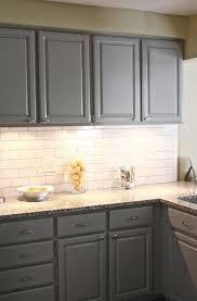 particular thumb chagne glass subway tile kitchen backsplash as