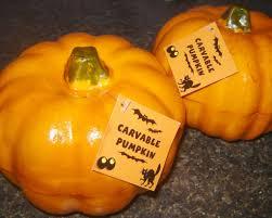 Carvable Craft Pumpkins Wholesale by Carvable Pumpkins Images Reverse Search