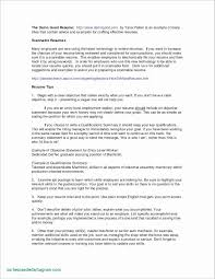 Example Of A Headline For Your Resume Beautiful Customer Service Examples