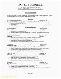 Customer Service Resume Examples Lovely A Good Cv For Of