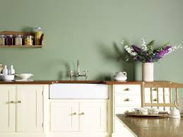 green kitchen walls home interiror and exteriro design home