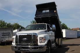 100 Jukonski Truck Ford Details