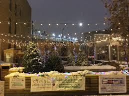 Fraser Fir Christmas Trees Delivered award winning fraser fir christmas trees in chicago city tree delivery