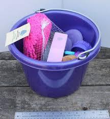 Horse Hair Shedding Tool by Purple Bucket Pail Horse Equine Groom Wash Kit Pony Magic Brush
