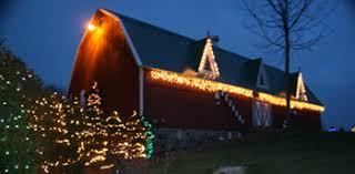 Christmas Tree Farm Lincoln Ne by Chicagoland Illinois Christmas Tree Farms Choose And Cut