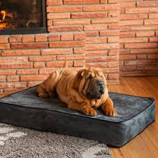 Xlarge Dog Beds by Snoozer Outlast Dog Bed Sleep System 5 Inches Thick