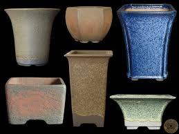 walsall studio ceramics raffle prize swindon district bonsai