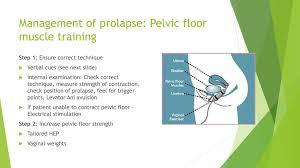 Pelvic Floor Muscle Training by The Pelvic Floor Why Is It So Important Ppt Download