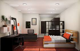 Apartment40 Elegant How To Decorate A One Bedroom Apartment Of Scenic Images Single Decor