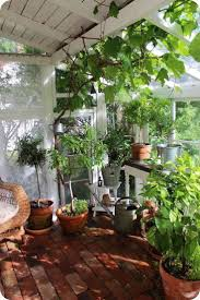 Backyard Greenhouse Winter | Home Outdoor Decoration Backyard Greenhouse Ideas Greenhouse Ideas Decoration Home The Traditional Incporated With Pergola Hammock Plans How To Build A Diy Hobby Detailed Large Backyard Looks Great With White Glass Idea For Best 25 On Pinterest Small Garden 23 Wonderful Best Kits Garden Shed Inhabitat Green Design Innovation Architecture Unbelievable 50 Grow Weed Easy Backyards Appealing Greenhouses Amys 94 1500 Leanto Series 515 Width Sunglo