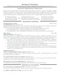 Resume Professional Profile Examples Personal For Resumes