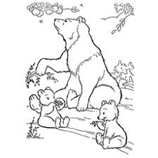 Wild Life Bear Coloring Pages