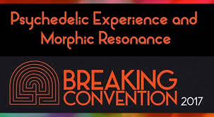 Psychedelic Experiences And Morphic Resonance