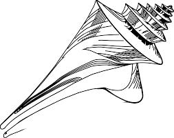 100 Sea Shell Design Shell Tattoo S Clip Art Library