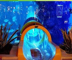 aquarium geant a visiter belgique les 24 meilleures images du tableau vivaexplore sur