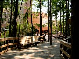 Ucf Help Desk Business by Walkway To Student Union University Of Central Florida