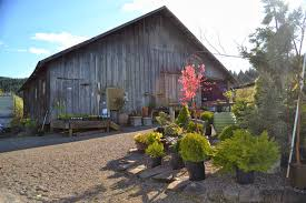 The Outlaw Gardener: April 2014 Townsend Barn Nursery Poulshot Devizes Home Facebook Big Sky Broker Listings 204 Best Rooms Images On Pinterest Ideas Babies Best 25 Pictures Country Barns Beauty The Lily Tennessee Venue Report Things To Do In Tn Near Cades Cove Smokies Posts 773 Succulent Ideas From Chattanooga 13 Fields Of Lilies That Remind You