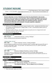 Good Resume Templates For College Students Sample