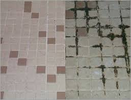 how to clean black mold from shower tile grout enhance