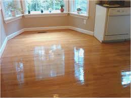 Ewbank Floor Polisher With Gloss Floor Polish by Wood Floor Polishers Images Home Flooring Design