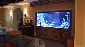 Fish Aquarium Home Design Outstanding House Plan Interesting Tank ... 60 Gallon Marine Fish Tank Aquarium Design Aquariums And Lovable Cool Tanks For Bedrooms And Also Unique Ideas Your In Home 1000 Rousing Decoration Channel Designsfor Charm Designs Edepremcom As Wells Uncategories Homes Kitchen Island Tanks Designs In Homes Design Feng Shui Living Room Peenmediacom Ushaped Divider Ocean State Aquatics 40 2017 Creative Interior Wastafel