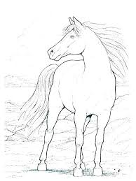 Horse Coloring Pages Easy Printable Racing E Es Beau