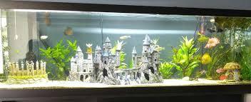 Star Wars Themed Aquarium Safe Decorations by Spongebob Fish Tank Fishies Pinterest Fish Tanks