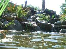 Pond Installation-Maintenance Contractor-San Diego|California ... Pond Installationmaintenance Ctracratlantafultongwinnett Supplies Installation Maintenance Centerpa Lancaster Nashville Area Coctorbrentwoodtnfranklin Check Out This Amazing Certified Aquascape Contractor Water Buildercontractor Doylestown Bucks Countypa Fish Koi Coctorcentral Palebanonharrisburg Science Contractors Outdoor Living Lifestyleann Arborwashtenawmichiganmi Garden Lifestyle Specialistsatlantafultongwinnett